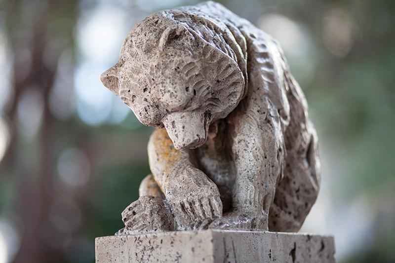 A Walk to Remembear: A tour of Berkeley's ursine neighbors