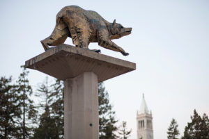 Bear statue in Lower Sproul